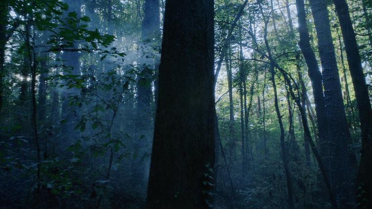 "atlanta s2e8 ""woods"""